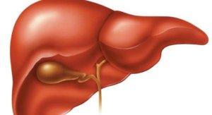 Воспалительные процессы в печени во многих случаях развиваются на фоне нарушения обмена веществ в организме