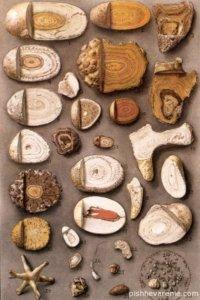 Оксолатные камни