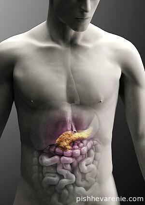 Заболевания поджелудочной железы: причины, симптомы и профилактика