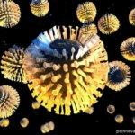Чем опасен ротавирус? Стоит ли его бояться?