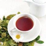 Народные средства при лечении заболеваний поджелудочной железы
