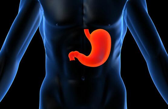 Атрофия слизистой желудка: причины, симптомы и методы лечения