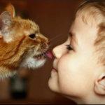 Гельминты у детей: симптомы гельминтозов и методы борьбы с этими заболеваниями