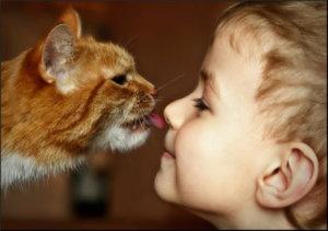 Есть риск заражения при взаимодействии с животными.
