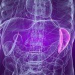 Чем опасен рак селезенки?