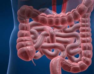 Прямое воздействие на кишечник