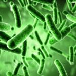 Кандидозный эзофагит: симптомы и причины возникновения заболевания