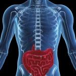 Заболевания кишечника