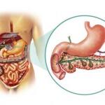Рак поджелудочной железы: сколько живут пациенты на разных стадиях онкопатологии