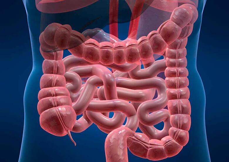 Чистим кишечник: разновидности препаратов
