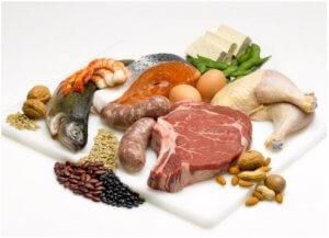 Усвоение белков
