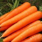 Такой знакомый овощ: чем полезна вареная морковь, как ее правильно готовить