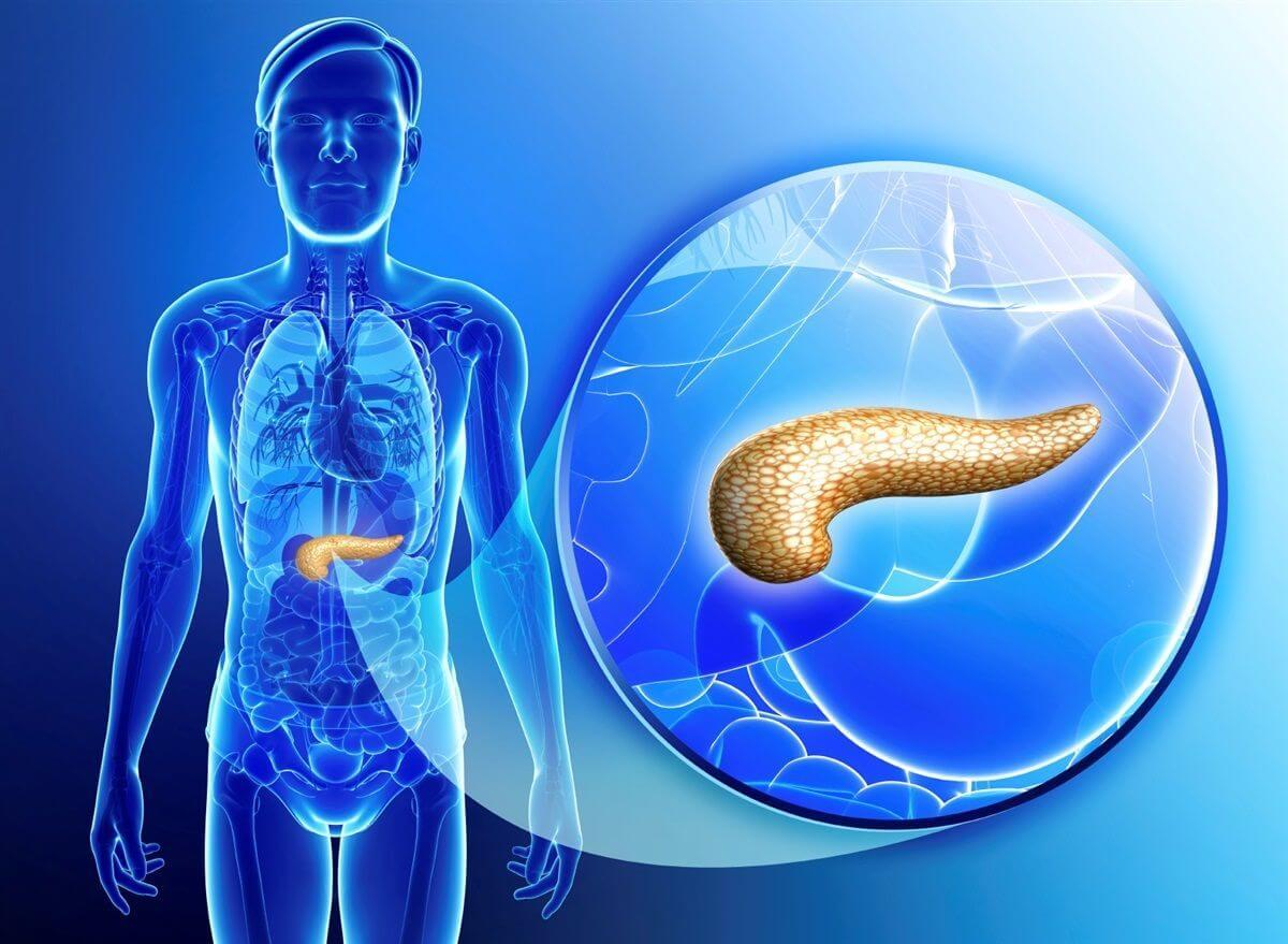 Лечение болезни: диета и употребление чернослива при панкреатите