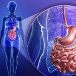 Инфекционные заболевания кишечника: какую опасность несет недуг, и при каких симптомах стоит незамедлительно вызывать квалифицированных специалистов?