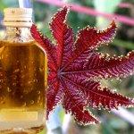 Как пить касторовое масло для получения лечебного эффекта