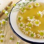 Травы для лечения кишечника: их эффективность и способы применения