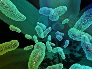 Что такое дисбактериоз у детей