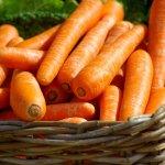 Как готовить морковные котлеты и чем они полезны