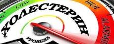 Высокий холестерин: содержание в продуктах, диета и в каких продуктах содержится много холестерина