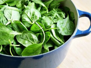Шпинат — что это за растение, какими свойствами обладает, рецепты с его применением