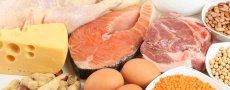 В чем есть белки и аминокислоты, чем грозит избыток белков