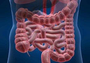 Как готовиться к колоноскопии, детальная информация о проведении диагностирования
