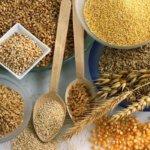 Полезные свойства и калорийность ячневой крупы