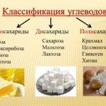 Углеводы: в каких продуктах их больше, значение для организма