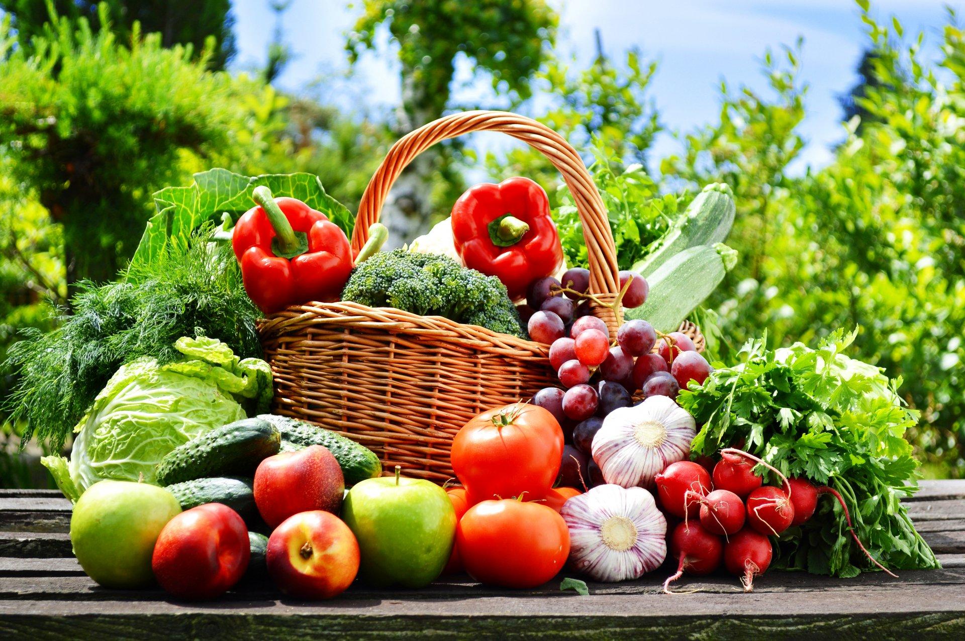 Овощные блюда для похудения: что приготовить на завтрак, обед, ужин