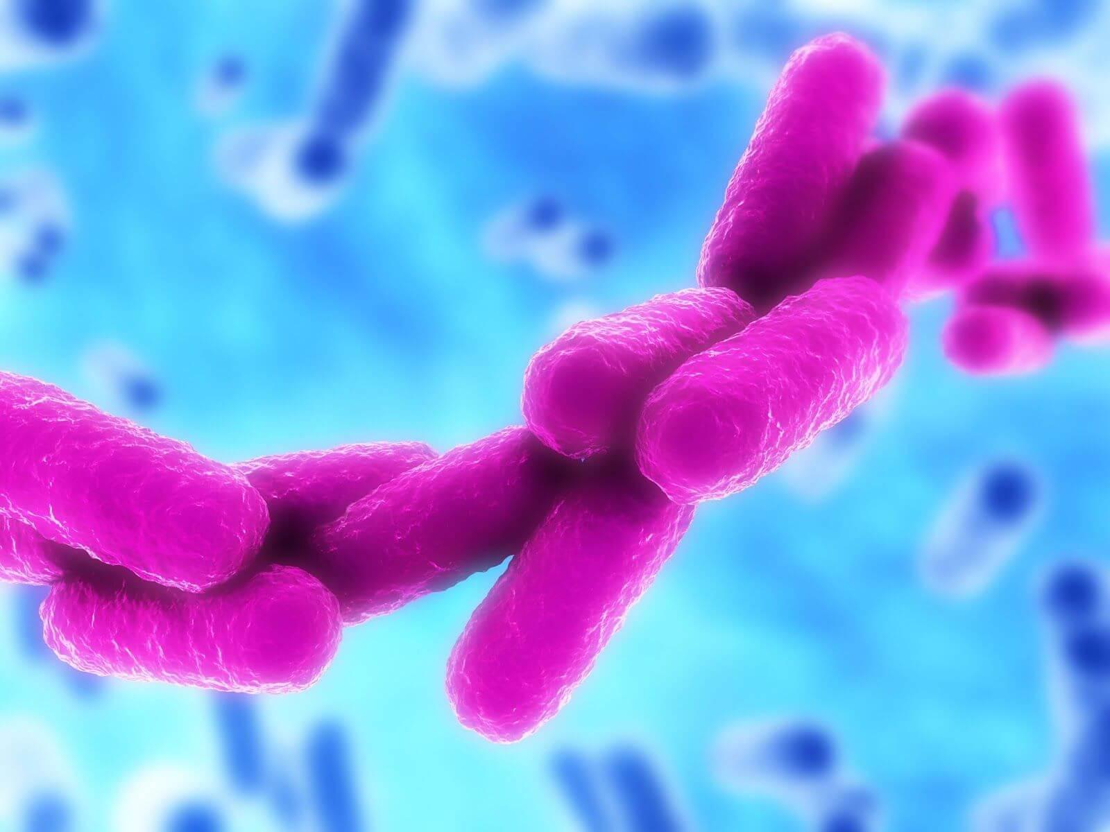 Клебсиелла – это опасная бактерия: основные сведения, пневмония, урологические инфекции, диагностика и лечение