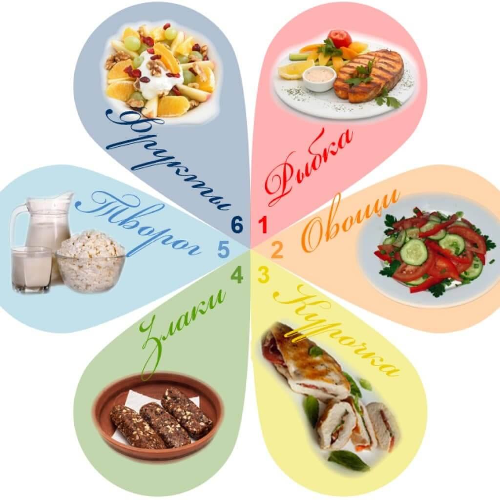 Монодиета 6 лепестков: рецепт быстрого похудения, отзывы