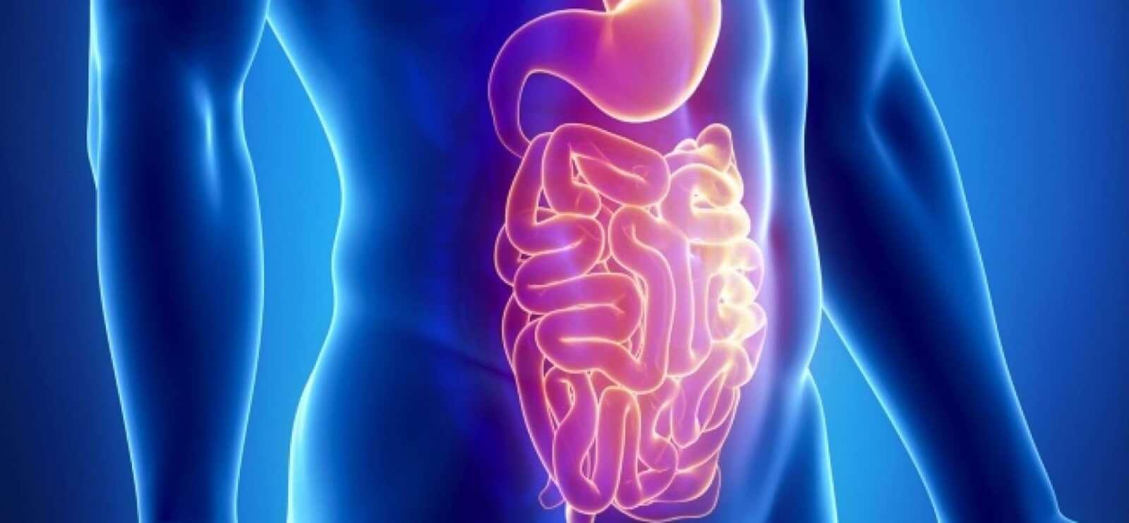 Как очистить кишечник, эффективно и быстро - Вести. Медицина 54