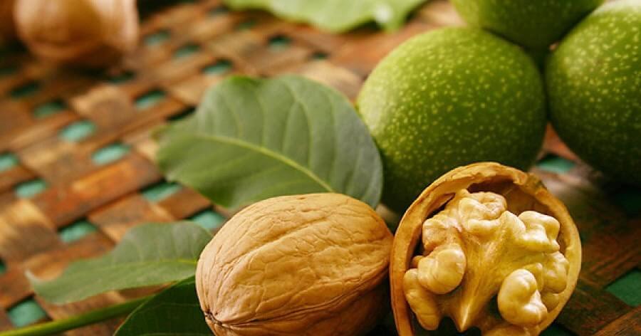Сколько калорий в грецких орехах и чем они полезны для человека