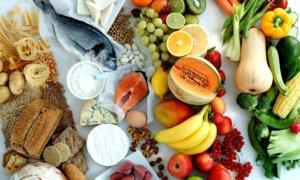 Легкоусвояемые продукты и их роль в рационе питания