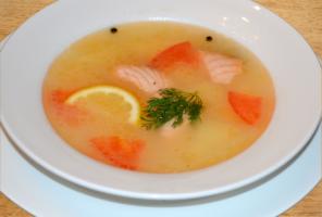 Как правильно варить рыбный бульон, чтобы было вкусно и полезно
