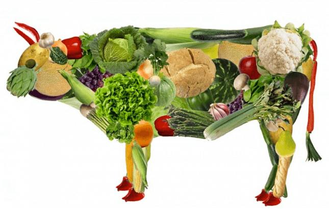 Последствия вегетарианства для здоровья человека