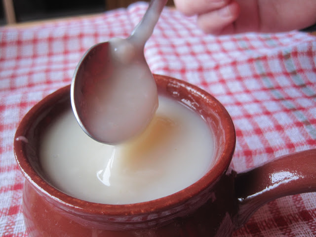 Кисель Изотова: рецепт приготовления и целебные свойства
