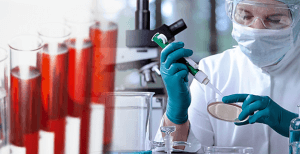 Исследование крови на хеликобактер