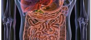 Дисбактериоз после антибиотикотерапии