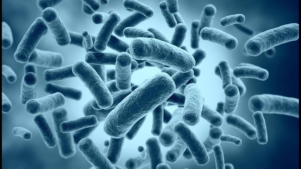 В помощь маленьким пузикам: лактобактерии для детей