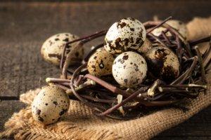 Как принимать перепелиные яйца: их польза в любом возрасте