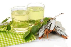 Лечебные свойства березового сока и способы его хранения